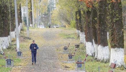 В Окуловке благоустраиваются дворовые территории и парк