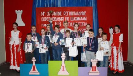 В Кулотино состоялось открытое региональное соревнование по шахматам памяти тренера В.В. Сагалатова