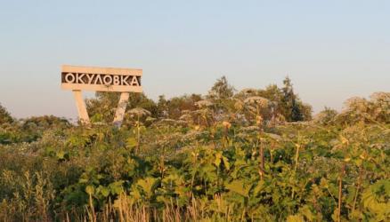 Площадь распространения борщевика Сосновского в районе составляет более 500 гектаров